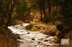Fall River Shot 02