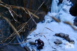 Focused Frozen Waterfall