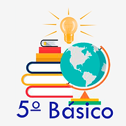 5 basico.png