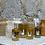 Taggiasca Olivenöl
