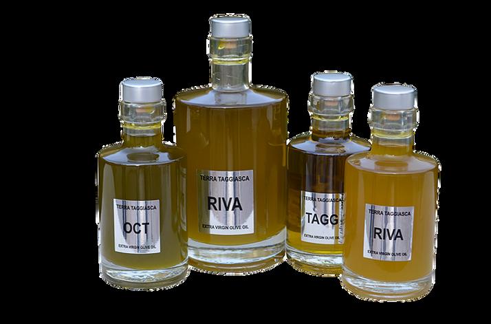 Taggiasca Olivenöl.jpg