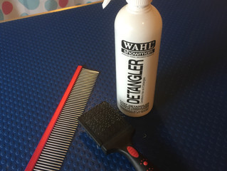 My tips for preventing a matted hair nightmare!