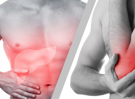 Et si vos blessures tendino-musculaires venaient d'un déséquilibre de votre Foie ?
