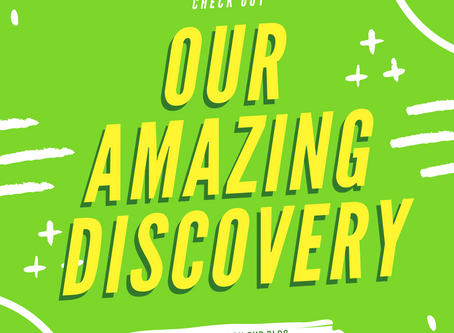 Our Amazing Discovery