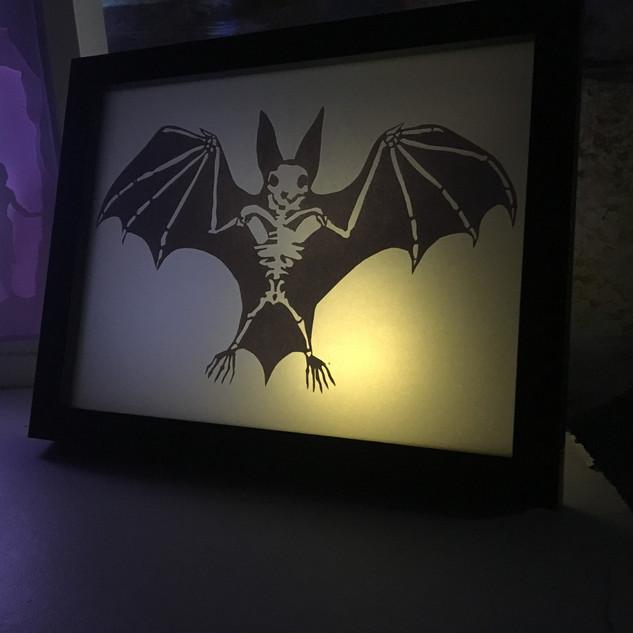 Anatomy - The Bat - 15x20cm