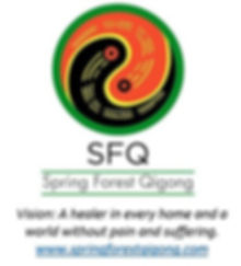 sfqlogowithvision_edited.jpg