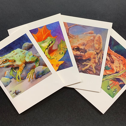 Frogs - 4 Card Set by Mary Burgess
