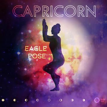 10.02_CAPRICORN.jpg