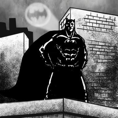 Bat Landing.mp4