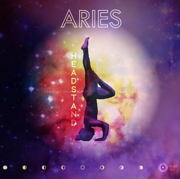 01.02_ARIES.jpg