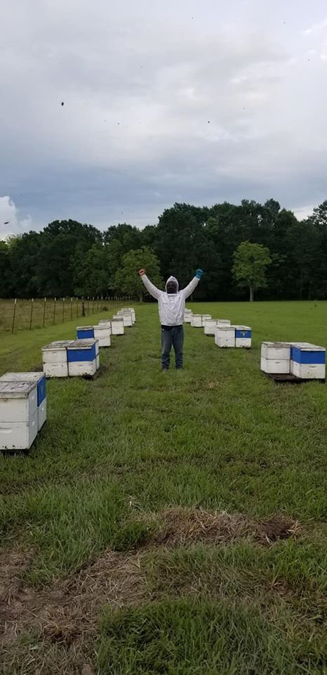 Jennings Bee Yard Hive installation
