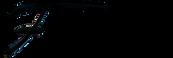 ferrini logo.png