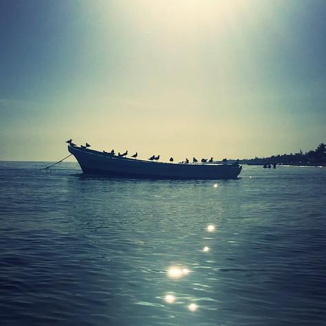 fishing-vacation-mayan-gypsy-progreso-beach-yucatan-airbnb.jpg