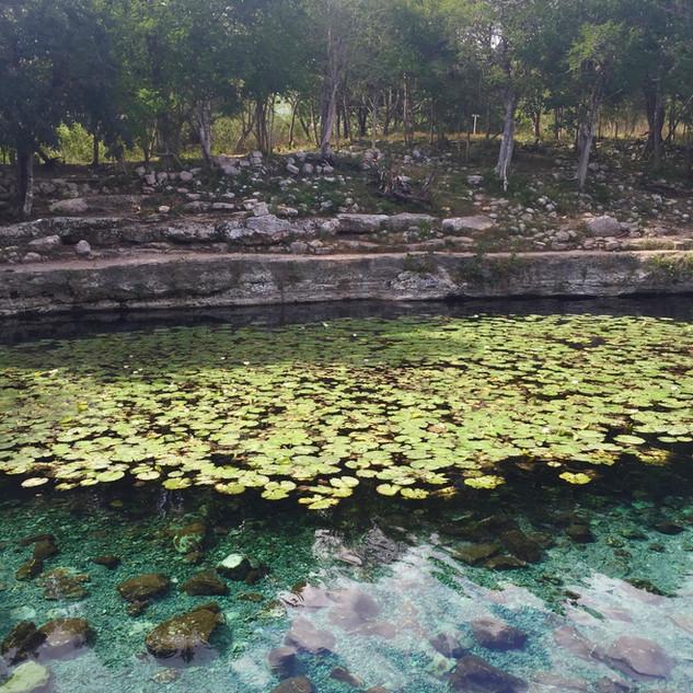 Dzibilchaltún ruins and cenote