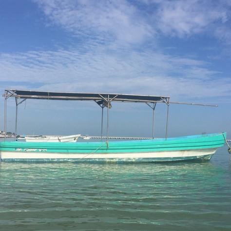 fresh-fish-boat-yucatan-mexico.jpg