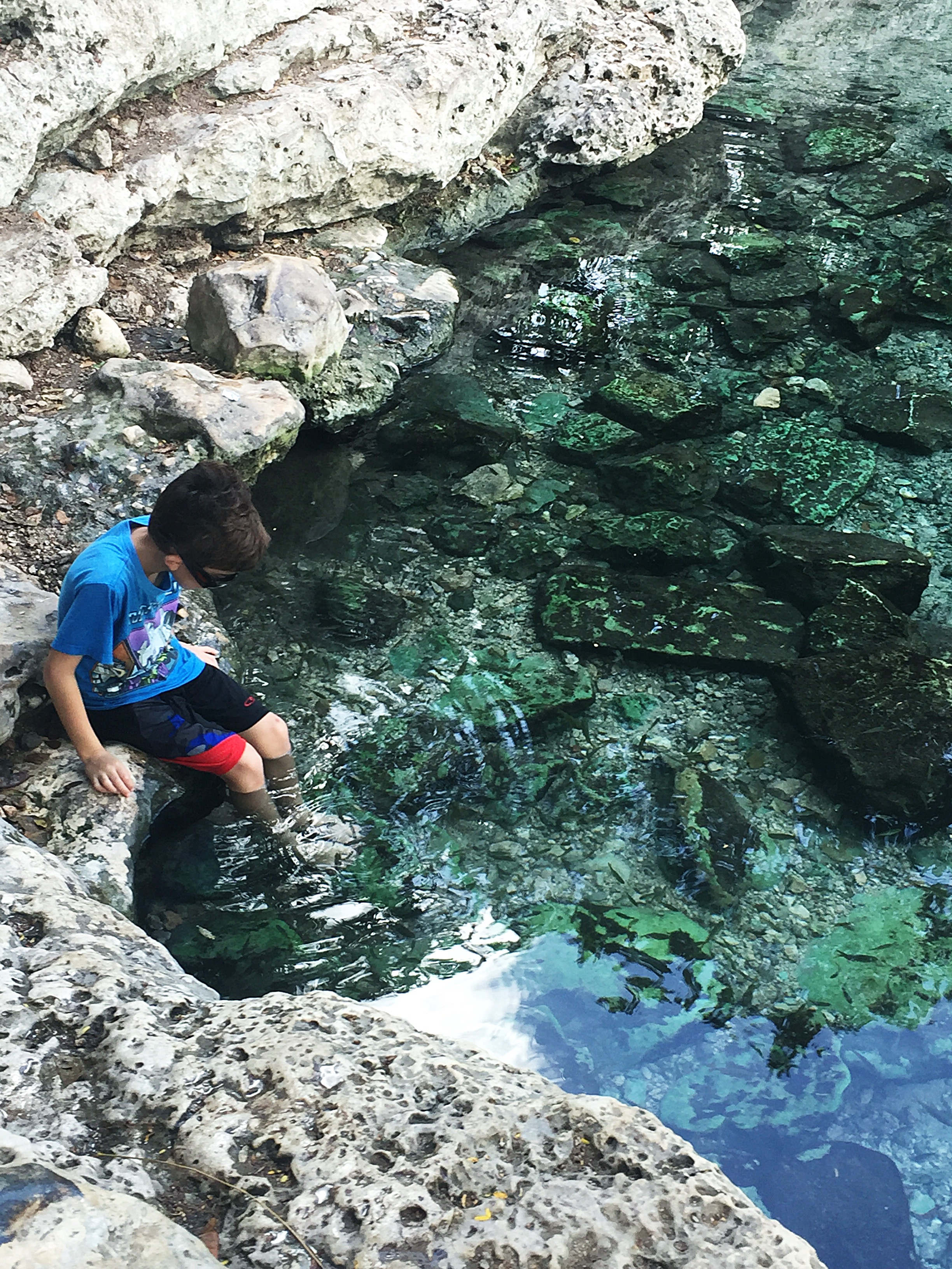 mayan-ruins-cenote-Xlakah-Dzibilchaltun