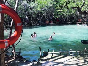 Corchito-cenote-progeso-yucatan-mexico-mayan-gypsy-hotel-13.jpg