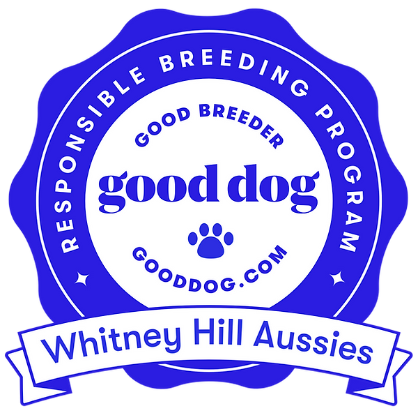 whitney-hill-aussies-badge.png