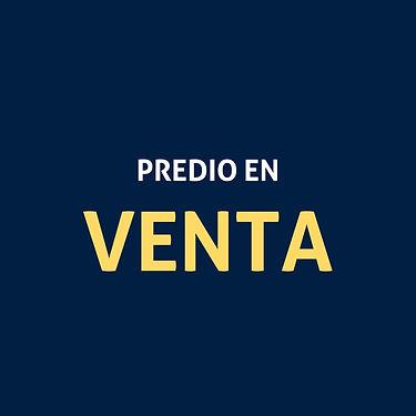 DISEÑO_PRESENTACIÓN_WEB.jpg