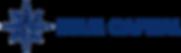 Logo Helm Capital