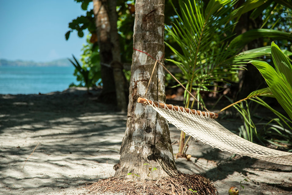 Isla Palenque-Bungalow Oceanview 2.jpg