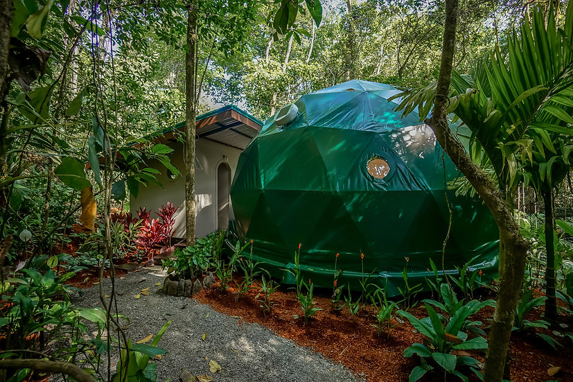 Geodesic Dome at Rebel Human Retreat