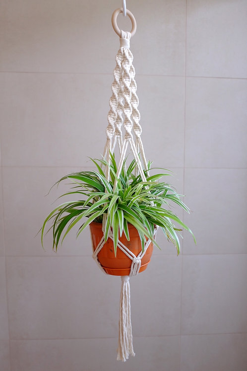 Thick 'Spiral' Plant Hanger