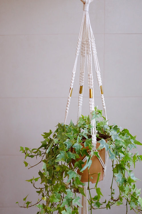 'Gold' Plant Hanger
