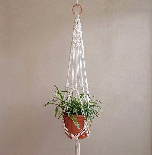 Bay 'Scallop' Plant Hanger
