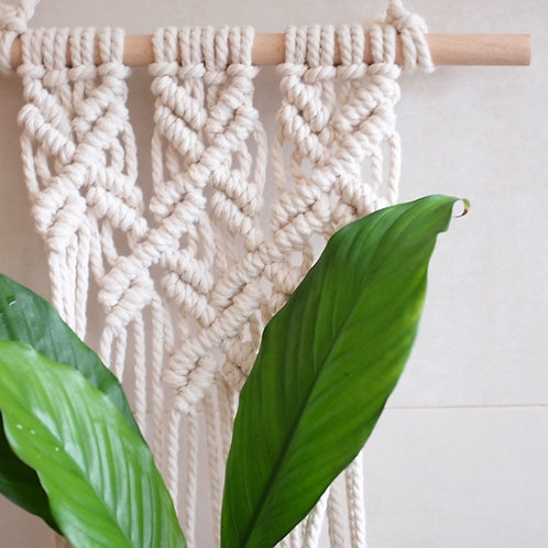 'Sally' - Wall Plant Hanger