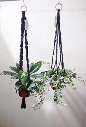 Black Plant Hangers