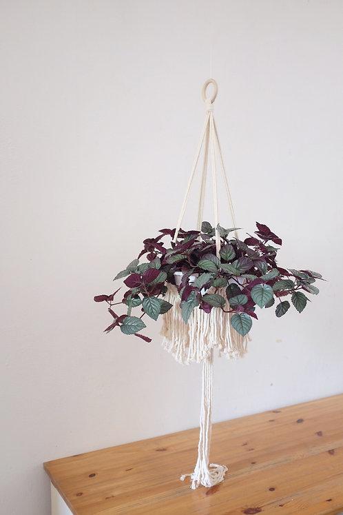'Full of Frills' Plant Hanger