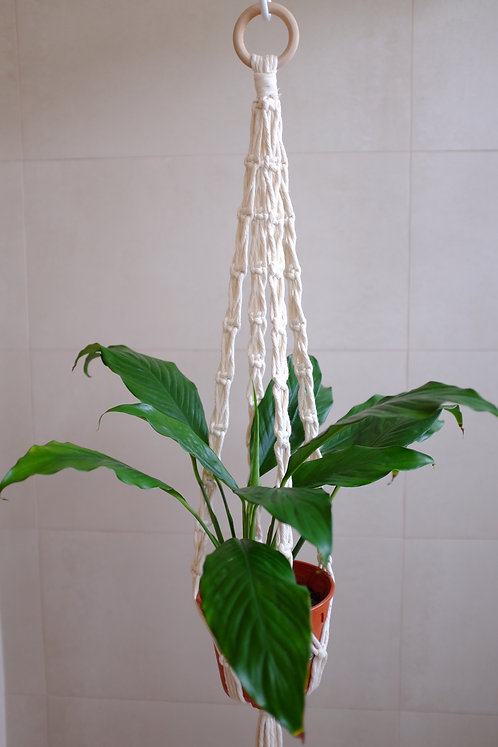 'X' Plant Hanger