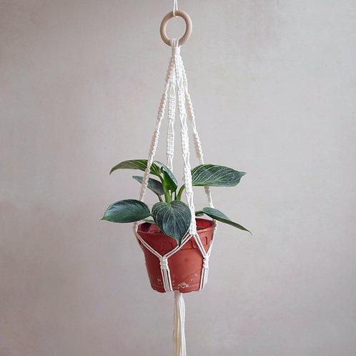 Plant Hanger Tutorial Guide Sheet
