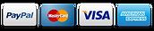 PayPal Mastercard VISA American Express