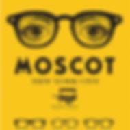 Moscot Optique Lamorere Opticien Biscarrosse