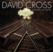 DAVID CROSS.jpg