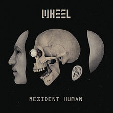 Wheel (2nd Review)