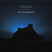 Esthesis