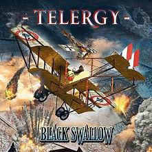 Telergy