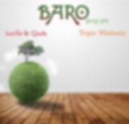 BARO PROG-JETS.jpg