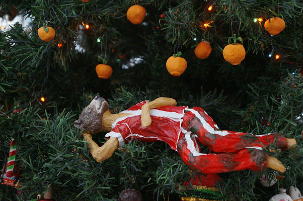 Dezembros - Tangerina Bruno (4).jpg