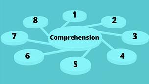 Comprehension Strategies Virtual Training