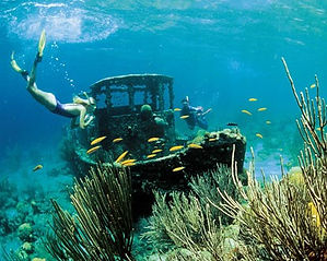 Snorkelling diving curacao