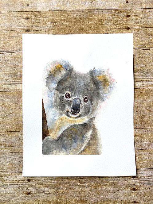 Stuie Koala Original Painting