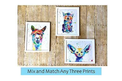 Mix and Match Any Three From The Pop Art Print Collection