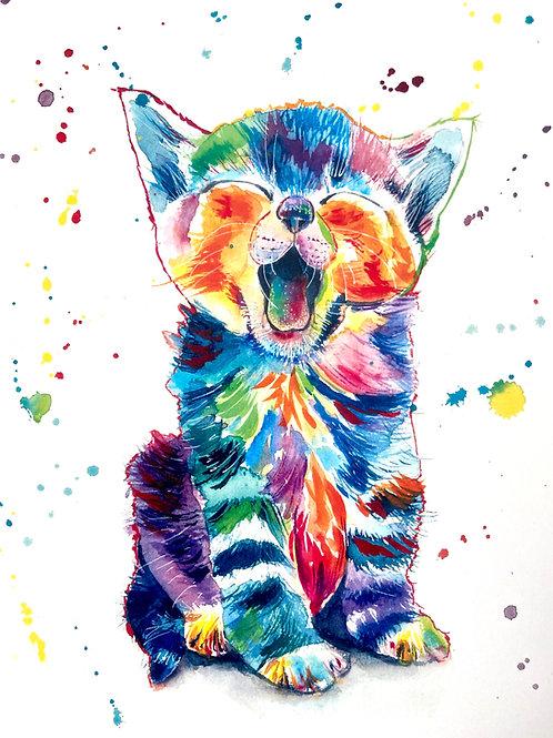 Cosmo the Cat