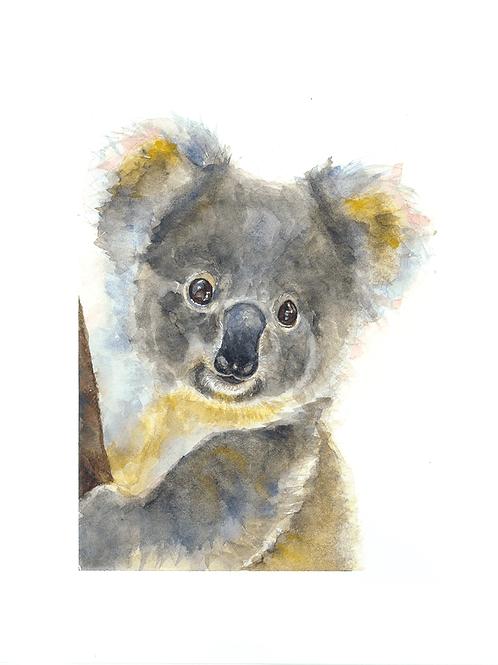 Stuie Koala Watercolor Print