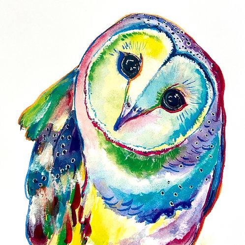 Penelope the Barn Owl