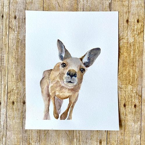Kangaroo Original Painting